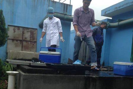 Việt Nam đối mặt với nguy cơ lây cúm chết người từ Trung Quốc